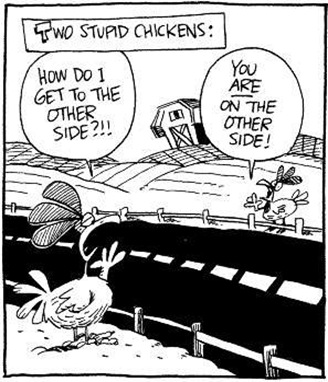 SQLAuthority News - MS Access Database is the Way to Go - April 1st Humor chicken