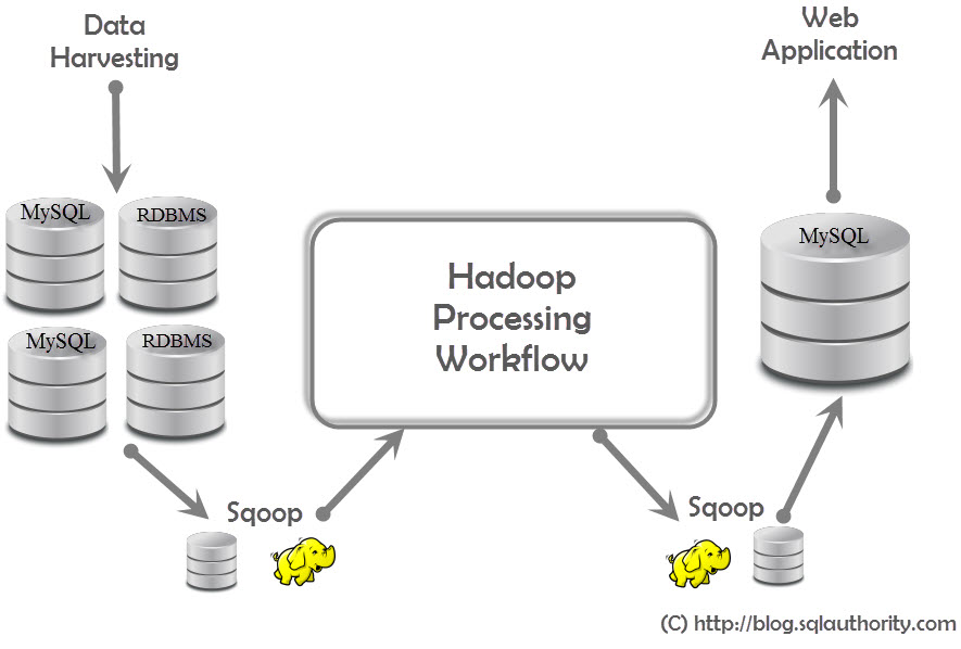 Big Data - Interacting with Hadoop - What is Sqoop? - What is Zookeeper? - Day 17 of 21 sqoop