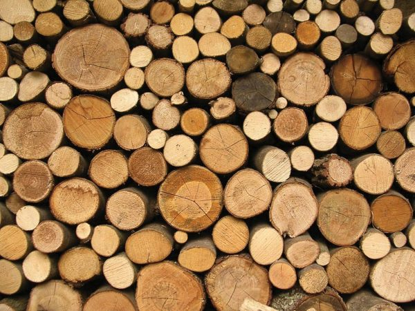 background_logs