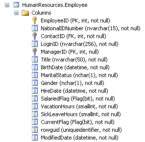 SQL SERVER - Using expressor Composite Types to Enforce Business Rules ex_c1