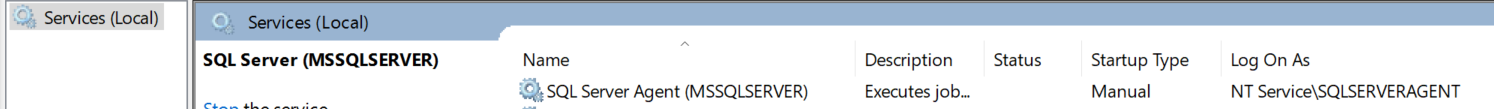 SQL SERVER - How to Turn On / Enable Instant File Initialization? services