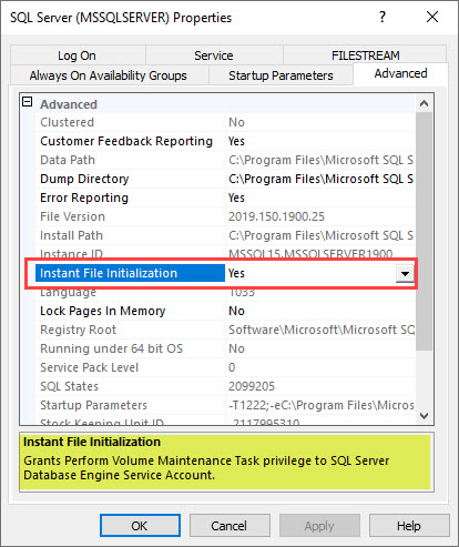 SQL SERVER 2019 - How to Turn On or Enable Instant File Initialization? SSCM-2019-IFI-01