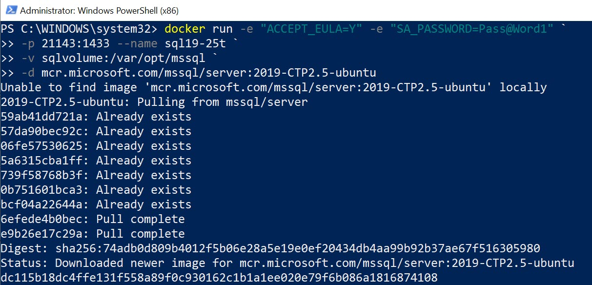 Docker - Running SQL Server Image Without Running Pull Command dockersqlupgrade2