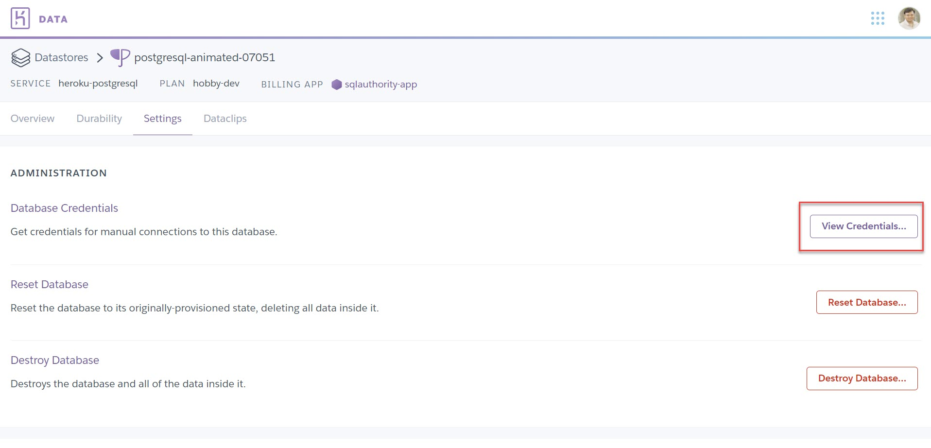 Heroku - How to Deploy Postgres Add-Ons? herokuapp8