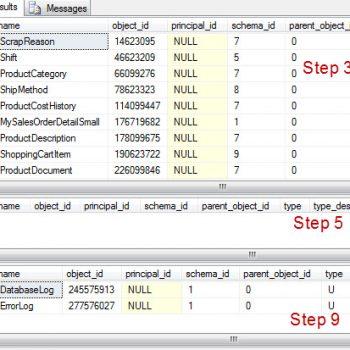 Download and Install SQL SERVER 2017 Developer Edition for