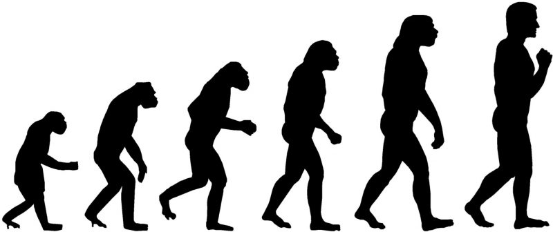 The Evolution of the DBA - Challenges, Changes and Upcoming Trends evolutionofdba-800x336
