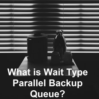 parallel backup