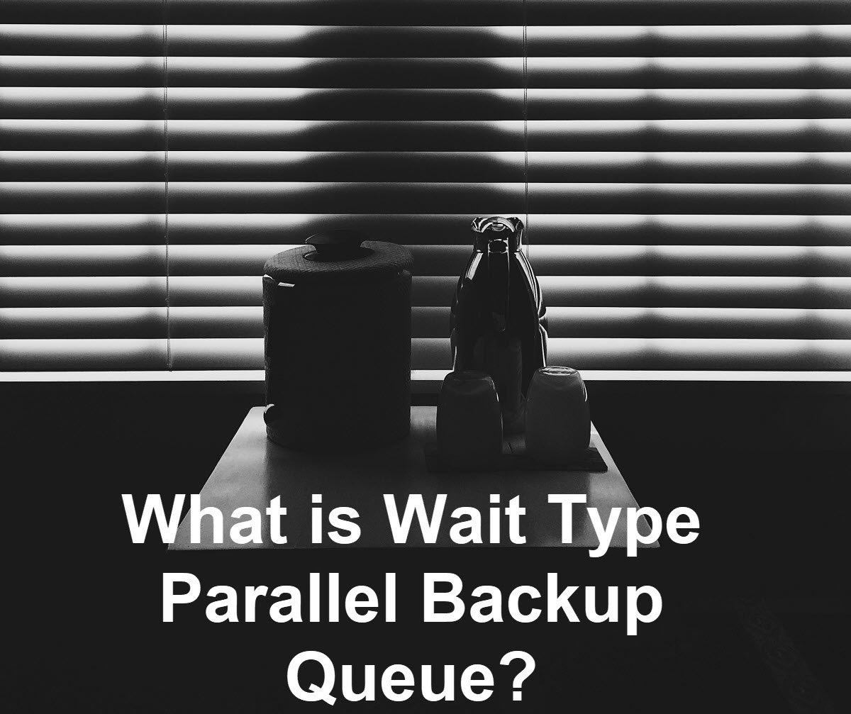parallel backup