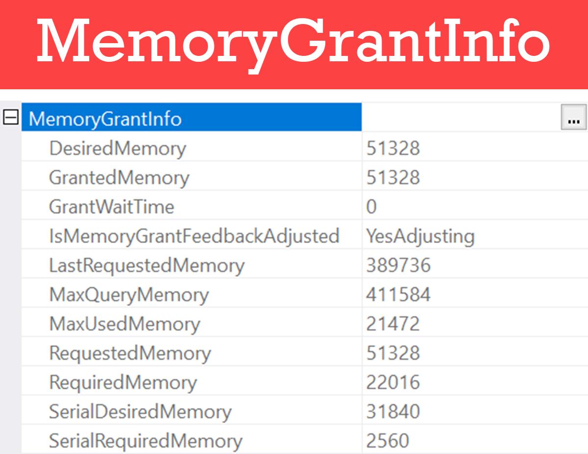 MemoryGrantInfo