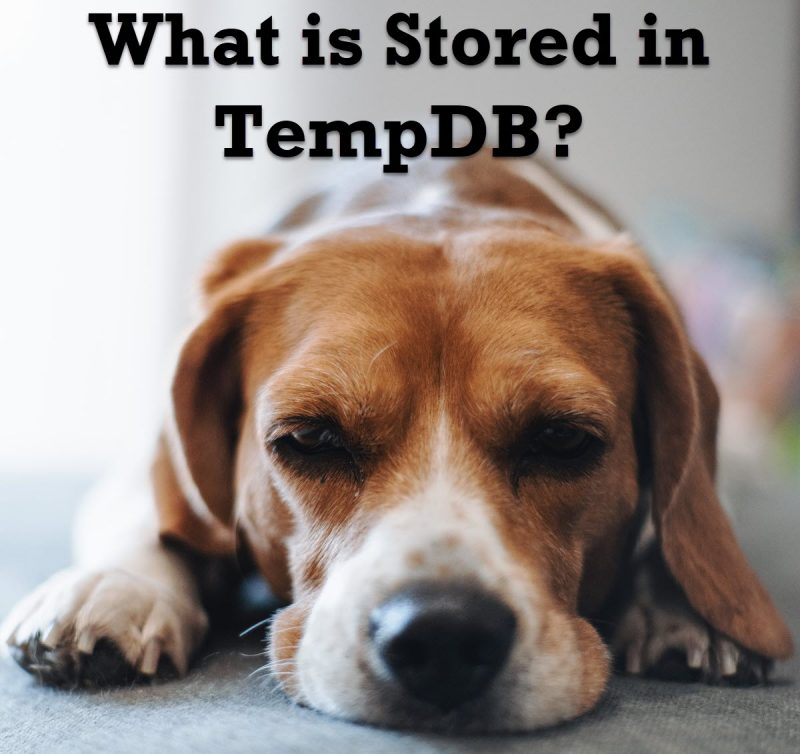 What is Stored in TempDB? - Interview Question of the Week #271 stored-800x754