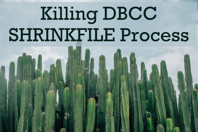 SQL SERVER - Killing DBCC SHRINKFILE Process - Is it Safe? SHRINKFILEProcess-800x533