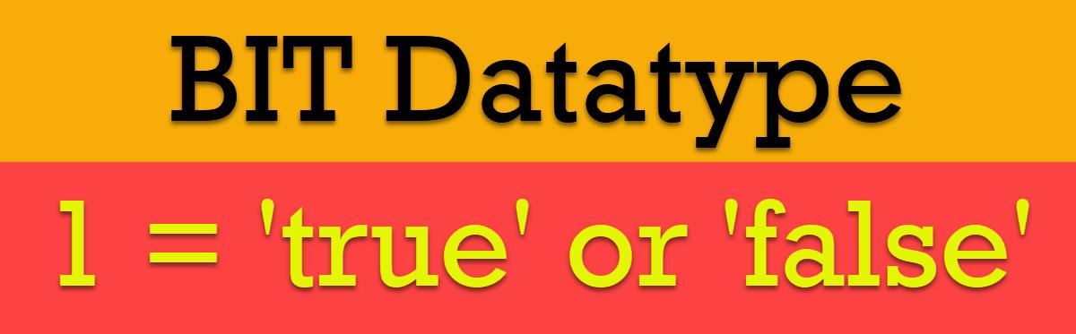 BIT Datatype