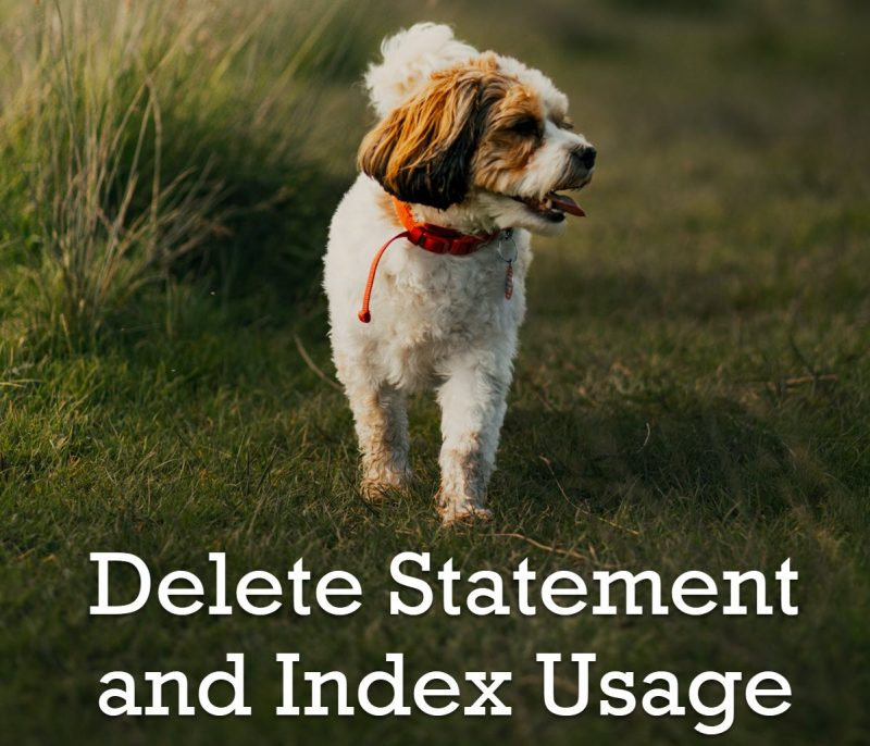 SQL SERVER - Delete Statement and Index Usage delete-800x686