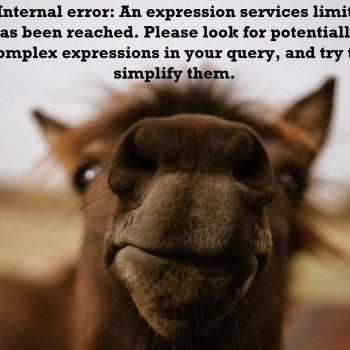 expression services