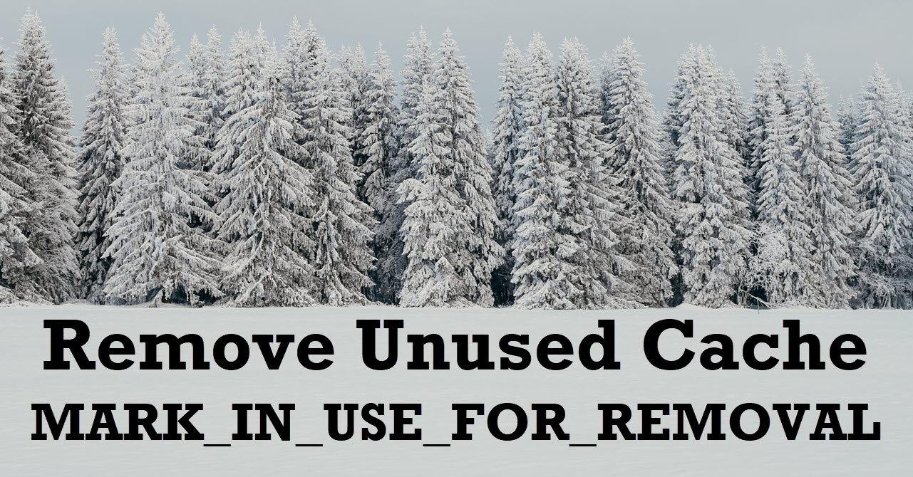 SQL SERVER – Remove Unused Cache MARK_IN_USE_FOR_REMOVAL
