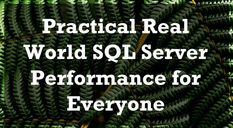 Practical Real World SQL Server Performance for Everyone - 2021 Edition everyone-800x441