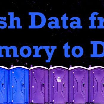 Flush Data